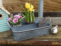 Zinc tray with two rooms, countryside style, Ib Laursen