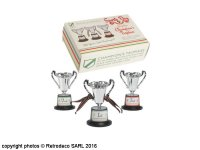 Set of 3 sports day champion's trophies, Rex International
