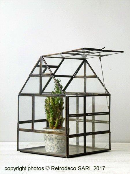 Mini serre de jardin ou terrarium verre et métal laiton ...
