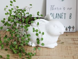 White ceramic pot holder Rabbit, cosy style, Chehoma