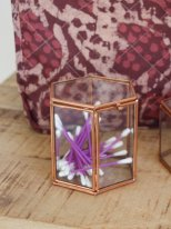 Medium hexagonal glass box Madam Stoltz