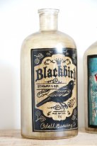 Bottle Blackbird beer, antique style, Chehoma